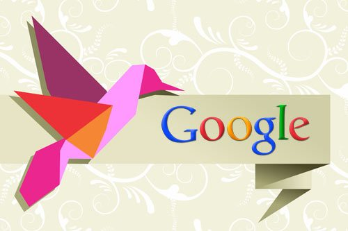 Video Google Hummingbird