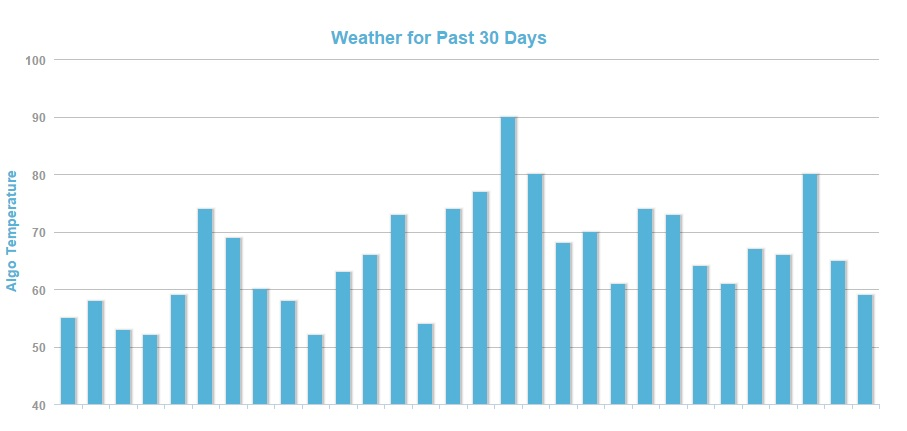 30 - Day Google Search Engine Fluctuation